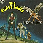 The Grass Roots Greatest Hits (Re-Recorded / Remastered Versions)