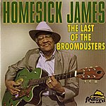 Homesick James The Last Of The Broomdusters