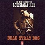 Louisiana Red Dead Stray Dog