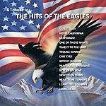Wild Life A Tribute To The Hits Of The Eagles