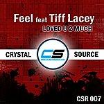Feel Loved U 2 Much (Feat. Tiff Lacey) (6-Track Maxi-Single)