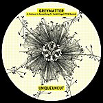 Grey Matter Believe In Something Ft. Heidi Vogel (Trg Remix) (Single)