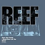 Reef The Collections