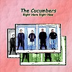 The Cucumbers Right Here, Right Now