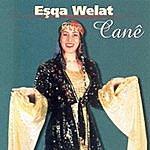 Cane Esqa Welat