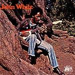 John White John White