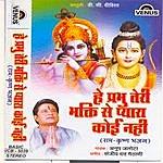 Anup Jalota He Prabhu Teri Bhakti Se Pyara Koi Nahi (Hindi Ram - Krishna Bhajan)