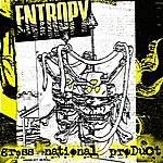 Entropy Gross National Product