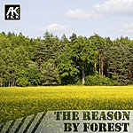 Forest The Reason