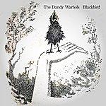 The Dandy Warhols Blackbird (Single)