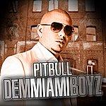 "Pitbull Dem Miami Boyz (Digital 12"")"