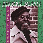 Brownie McGhee Facts Of Life