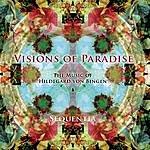 Sequentia Visions Of Paradise: The Music Of Hildegard Von Bingen
