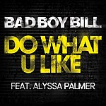Bad Boy Bill Do What U LIke (7-Track Remix Maxi-Single)