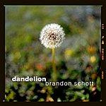 Brandon Schott Dandelion