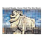 Severed Heads Come Visit The Big Bigot (Bonus Version)