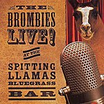 The Brombies Live At The Spitting Llamas Bluegrass Bar