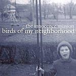 The Innocence Mission Birds Of My Neighborhood