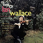 Ian Wallace Nothing Quite Like It