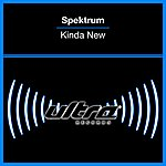 Spektrum Kinda New (9-Track Maxi-Single)