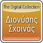 Dionisis Shinas The Digital Collection