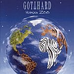 Gotthard Human Zoo