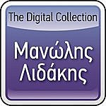 Manolis Lidakis The Digital Collection