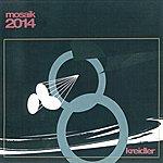 Kreidler Mosaik 2014