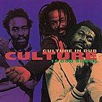 Culture Culture In Dub: 15 Dub Shots