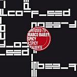 Marco Bailey Spicy (2-Track Maxi-Single)