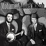 Mohamed Abdel Wahab Al Gondol