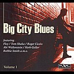 Floy Big City Blues Vol. 1
