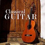 Sabicas Classical Guitar