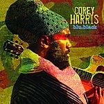 Corey Harris Blu.Black