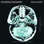 Breaking Benjamin Dear Agony