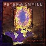 Peter Hammill Roaring Forties