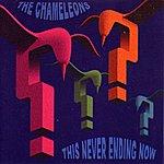 The Chameleons UK This Never Ending Now