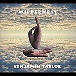 Ben Taylor Wilderness (Single)