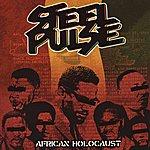 Steel Pulse African Holocaust