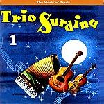 Garoto The Music Of Brazil/Trio Surdina, Vol.1/Recordings 1953