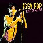 Iggy Pop Live Supreme