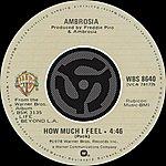Ambrosia How Much I Feel/Ready For Camarillo (Digital 45)