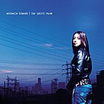 Michelle Branch The Spirit Room (Deluxe Edition)