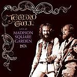 Jethro Tull Live At Madison Square Garden 1978