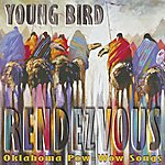 Young Bird Rendezvous: Oklahoma Pow-Wow Songs