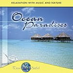 Dave Miller Tranquil World - Ocean Paradises