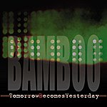 Bamboo Tomorrow Becomes Yesterday