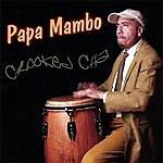 Papa Mambo Crooked Cha