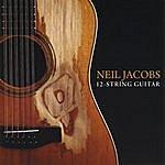 Neil Jacobs 12 String Guitar