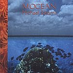 Michael Stearns M'ocean
